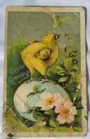 Antique Easter Victorian Postcard Baby Chick Egg Spring c.1903
