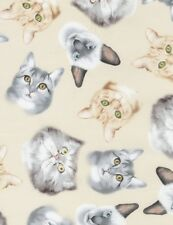 Cat Fabric - Faces Toss on Cream C5752 - Timeless Treasures YARD