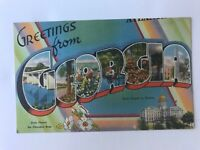 Postcard GA Greetings From Georgia State Flower Capital Linen c1940's
