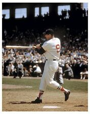 "11"" x 14"" COLOR PHOTO: TED WILLIAMS  ""THE SWING"" RED SOX BASEBALL FREE SHIP"