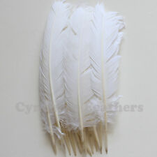 Turkey Feathers, White Turkey Round Quill Feathers 12-14 inches 20 pcs