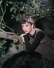Letrero De Metal Hepburn Audrey Sabrina 12 A4 12x8 Aluminio