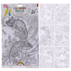 Relaxing Mindfulness Colouring Book 6 A4 Sheets Zoo and Animal - Owl Bear Horse