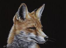 "FOX 19 vixen pup renard painting Sandrine Curtiss ORIGINAL Art 5x7"""
