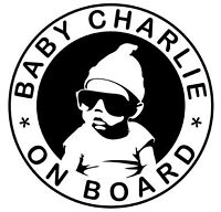 Cool Personalised Baby on Board car vinyl sticker choose your own babies name