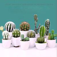 Home Plastic Miniature Artificial Cactus Fake Plant Floral Decor Succulents