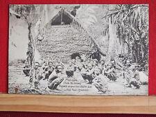 Fotokarte - Matugas - Deutsch Neu-Guinea - Papuas an Asa-Kult-Stätte - gel 1909