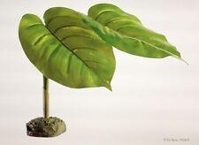 Exo Terra Scindapsus Tree Frog Smart Plant
