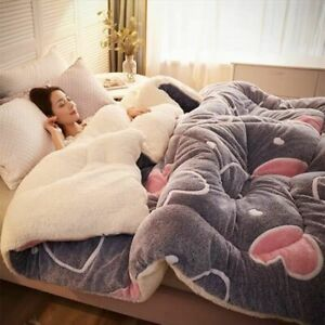 Super Warm Lamb Blankets Wool Quilt Winter Comforter Cotton Soft King Queen