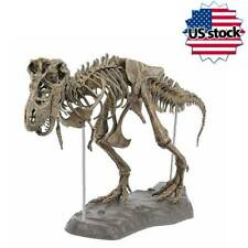 T-Rex Tyrannosaurus Rex Skeleton Dinosaur Animal Collector Model Decor  Toy NEW