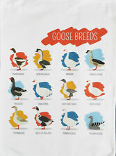 Breeds of Goose Large Cotton Tea Towel by Half a Donkey