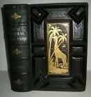 RARE ANTIQUE BOOK 🌟 WORLD of WILD ANIMALS_BEASTS_BIRDS_REPTILE_FISH +_SOLD $500
