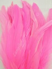 Hot Pink Coque Rooster Tail Feathers 8-10 inch per ounce