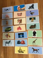 Laminated Flashcards Kids Baby Preschool Picture Word Cognitive Therapy~20 cards