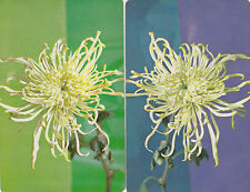 #95 2 (pair) vintage single playing swap cards - Flowers  - JS