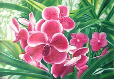 FLORAL Original painting ORCHIDS Pink - 60x90cm-Framed