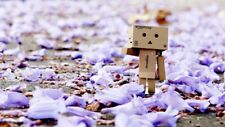 """Danbo amongst the spring petals"" Color Photo Print"