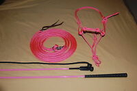PINK STIFF HALTER, 14' LEAD ROPE, AND HANDY CARROT STICK FITS PARELLI TRAINING