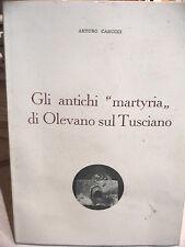 Storia Salerno GLI ANTICHI MARTYRIA DI OLEVANO SUL TUSCIANO Arturo CARUCCI grott