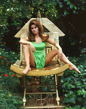RAQUEL WELCH 8X10 GLOSSY PHOTO PICTURE
