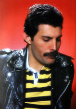 """Freddie Mercury UNSIGNED 6/"""" x 4/"""" photograph M7339 Lead singer with Queen"""