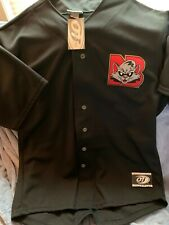 New Britain rock cats retro big papi style jersey 2xl