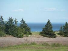 6 Acres of Beach Access Land, Building Lot, Paved Road Frontage & All Utilities