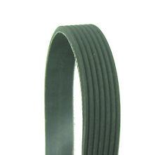 Parts Master Premium MultiRib Serpentine Belt 1005K7