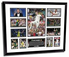 DAVID WARNER #2 SIGNED LIMITED EDITION FRAMED MEMORABILIA