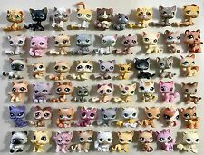 🐱Littlest Pet Shop 🐱AMAZING CAT LOT 54 CATS!!!✨RARES!!!✨Great Variety✨MUST SEE