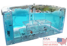 U.S.A. Shipping Ant Farm Labyrinth Nursery Clear Plastic Maze Feeding Ant House