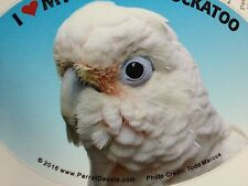 Goffin's Cockatoo Parrot Exotic Bird Vinyl Decal Bumper Sticker