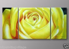 Yellow rose with water drops  oil painting on canvas Framed