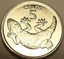 Gem Unc Kiribati 1979 5 Cents~Rare 20,000 Minted~Stump Tailed Gecko~Awesome~F/Sh
