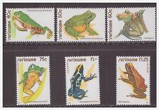Surinam / Suriname 1981 Kikker frog frosch grenouille MNH