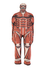 Attack on Titan Colossal Titan Cushion Pillow