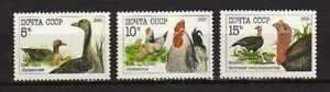 15184) Russland 1990 MNH Neu - Birds - Vögel