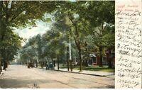 Vintage 1908 Postcard Peachtree St Atlanta GA