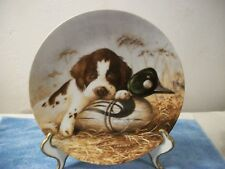 "Knowles 1987 Field Puppies ""Dog Tired The Springer Spaniel"" Plate by Lynn Kaatz"