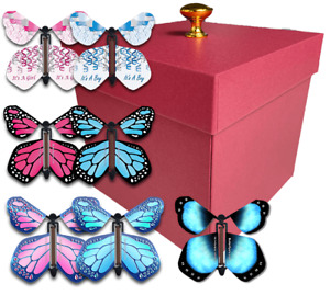 Red Exploding Butterfly Box With Gender Reveal Flying Butterflies