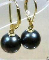 New AAA+ 10-11mm ROUND AAA+ TAHITIAN BLACK PEARL EARRING 14K GOLD