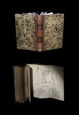BIOLOGIE ZOOLOGIE ORNITHOLOGIE Imp. BAYEUX CHESNON Essai sur Histoire naturelle.