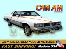1977 Pontiac LeMans Can Am Decals & Stripes Kit