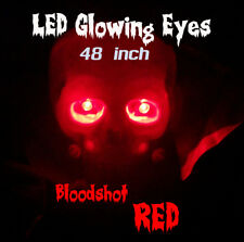 LED GLOWING EYES - HALLOWEEN RED 5MM 9V ON/OFF SWITCH  48 inch pigtail