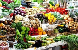 NON GMO HEIRLOOM VEGETABLE SEED YOU CHOOSE OVER 90 VARIETIES GROW YOUR OWN FOOD!