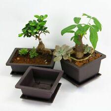 Garden Supplies Retro Plant Pot Plastic Succulent Flower Pot Balcony Decoration