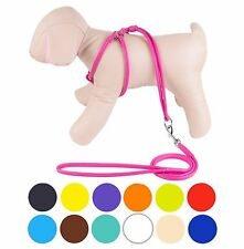 Rolled Leather Dog Harness Step-In Leash Small