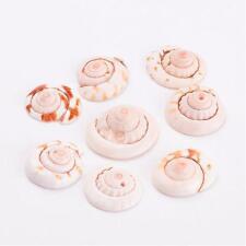 20pcs Spiral Puka Shell Beads Dyed PeachPuff DIY about 15~21mm long 6~8mm thick