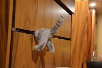 The Fridge Kitten! Plush Kitten Cat Butt Magnet-- Cat Stuck in Fridge Door