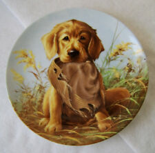 Caught in the Act - Golden Retriever Collector Plate Lynn Kaatz - 1987 - Knowles